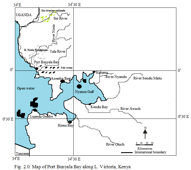 Review of the Distribution and yield performance of Oreochromis niloticus (Linnaeus 1758) in different microhabitat types around Port Bunyala Bay of Lake Victoria, Kenya