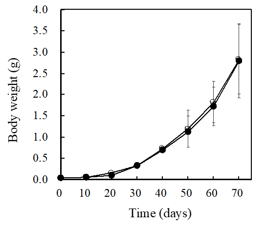 The effects of a marine photosynthetic bacteria <em>Rhodovulum sulfidophilum</em> on the growth and survival rate of <em>Marsupenaeus japonicus</em> (kuruma shrimp)