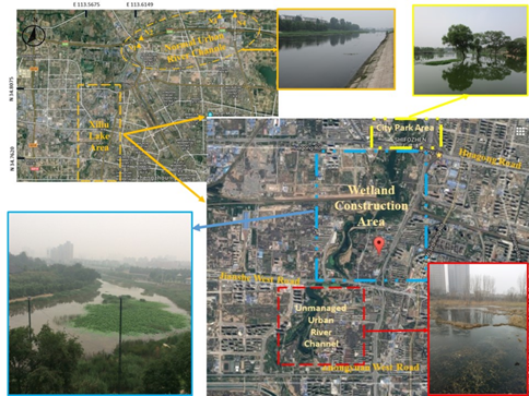 Effects of landscape on the distributions of nutrients and polycyclic aromatic hydrocarbons in an urban river system