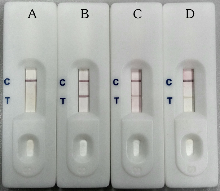 Evaluation of a user-friendly test device (<em>Ac</em>Quick<sup>Dx</sup>) for detection of specific antibodies to human angiostrongyliasis