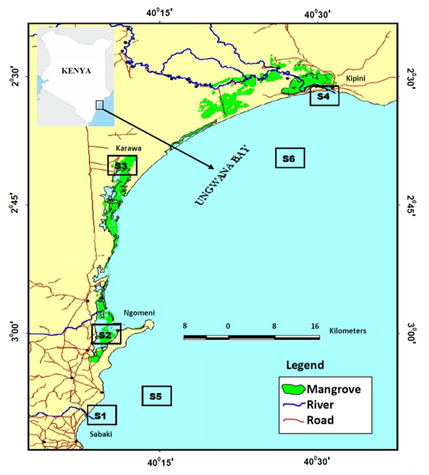 Morphometric variations among populations of the wild Penaeid shrimps in Malindi–Ungwana Bay along the Northern Coast of Kenya
