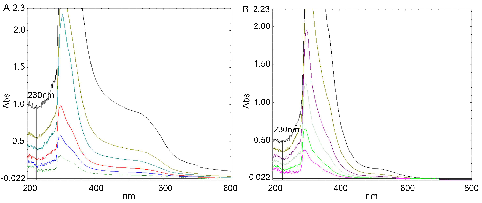 Wavelength patterns (200 nm-800 nm) with different concentrations of AFR and ABR (from bottom to top: 200, 100, 50, 25, 12.5, and 6.25 mg/l)