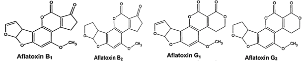 Chemical structures of B1, B2, G1, and G2 AFs